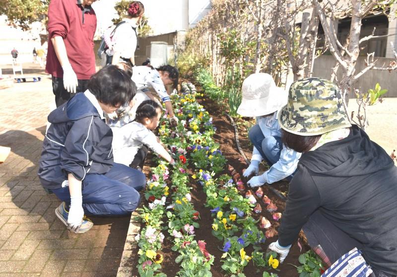 No.268 花壇の植え替え