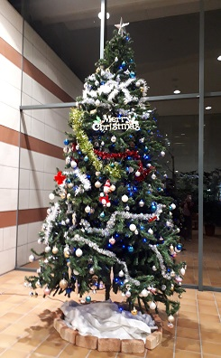 クリスマスツリーを飾り付けました